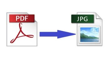 Guide On Using PDF Bear's PDF To JPG Converter Tool