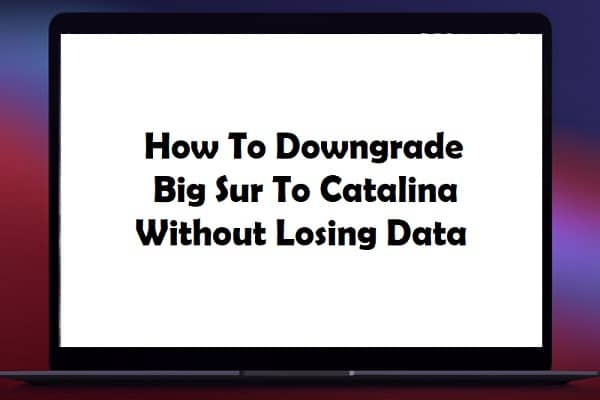 How To Downgrade Big Sur To Catalina Without Losing Data
