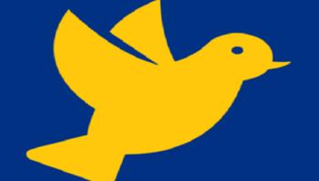 Word Pigeon Export Content to WordPress