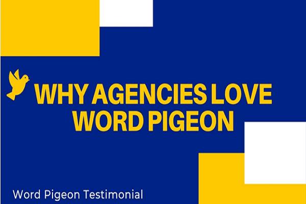 Word pigeon